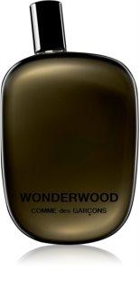 Comme des Garçons Wonderwood Eau de Parfum για άνδρες 100 μλ