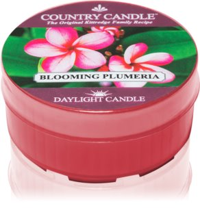 Country Candle Blooming Plumeria candela scaldavivande 35 g