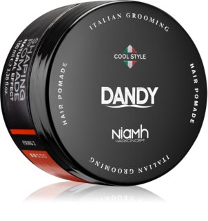 DANDY Shaping Pomade pomata modellante per capelli