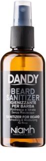 DANDY Beard Sanitizer дезинфекциращ спрей без отмиване за защита на брадата
