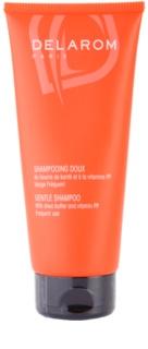 Delarom Hair Care jemný šampon s bambuckým máslem