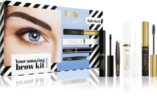 Delia Cosmetics Eyebrow Expert Light Black kozmetični set III. (za obrvi)