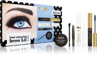 Delia Cosmetics Eyebrow Expert Light Black lote de regalo de cejas