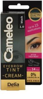Delia Cosmetics Cameleo professionelle Creme-Farbe für die Augenbrauen ohne Ammoniak