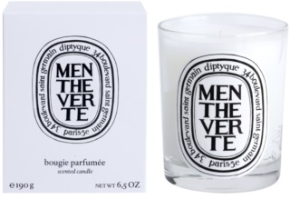 Diptyque Menthe Verte Scented Candle 190 g