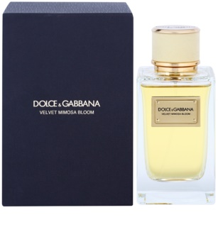 Dolce & Gabbana Velvet Mimosa Bloom Eau de Parfum for Women 150 ml