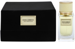 Dolce & Gabbana Velvet Mimosa Bloom Parfumovaná voda pre ženy 50 ml