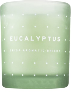 DW Home Eucalyptus Scented Candle 371,3 g