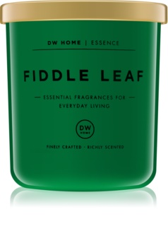 DW Home Fiddle Leaf vela perfumada  255,85 g