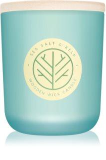 DW Home Sea Salt & Kelp świeczka zapachowa  320,49 g