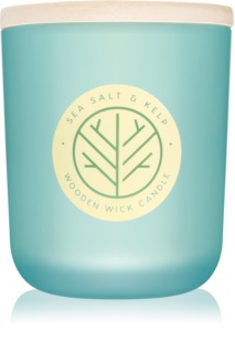 DW Home Sea Salt & Kelp Scented Candle 320,49 g
