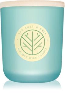 DW Home Sea Salt & Kelp mirisna svijeća 320,49 g s drvenim fitiljem