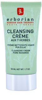 Erborian Detox 7 Herbs čisticí krém pro rozjasnění pleti
