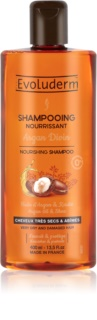 Evoluderm Argan Divin Nourishing Shampoo with Moroccan Argan Oil for Dry and Damaged Hair