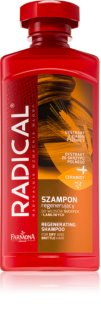 Farmona Radical Dry & Brittle Hair champô regenerador