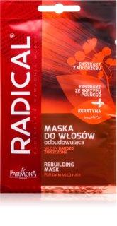 Farmona Radical Damaged Hair mască regeneratoare pentru părul deteriorat