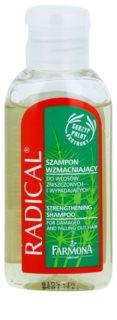 Farmona Radical Hair Loss Shampoo zur Stärkung der Haare