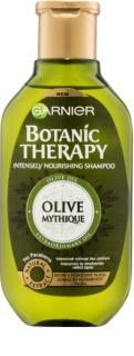 Garnier Botanic Therapy Olive champô nutritivo para cabelo seco a danificado