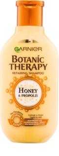 Garnier Botanic Therapy Honey shampoing rénovateur pour cheveux abîmés