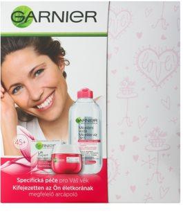 Garnier Skin Naturals kozmetika szett I.