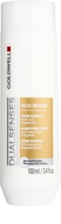 Goldwell Dualsenses Rich Repair Regenerating Shampoo for Dry and Damaged Hair