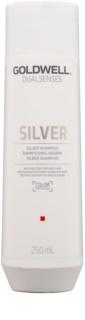 Goldwell Dualsenses Silver neutralizující stříbrný šampon pro blond a šedivé vlasy