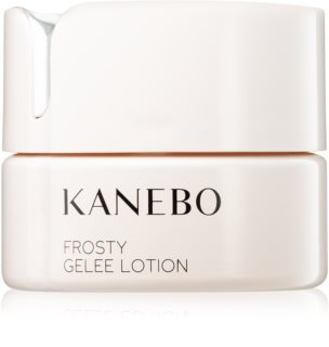 Kanebo Skincare Refreshing Gel with Cooling Effect