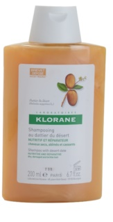 Klorane Dattier Shampoo For Brittle And Stressed Hair