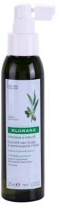 Klorane Olive Extract concentrado en spray sin aclarado para cabello debilitado