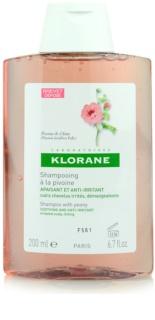 Klorane Peony champô apaziguador para couro cabeludo sensíve