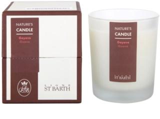 Ligne ST. Barth Guave ароматна свещ  180 гр.