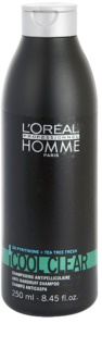 L'Oréal Professionnel Homme Cool Clear шампунь проти лупи