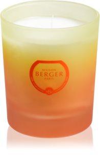 Maison Berger Paris Coco Monoï vonná svíčka