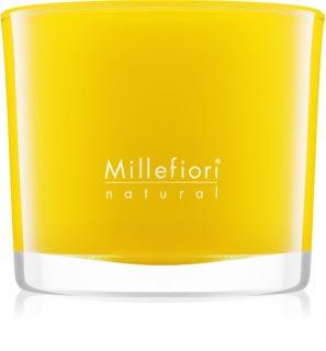 Millefiori Natural Pompelmo Scented Candle 180 g