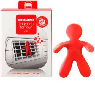 Mr & Mrs Fragrance Cesare Autoduft 1 St.  (Pepper Mint)