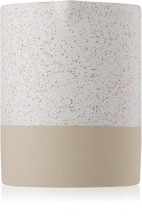 Paddywax Mesa Black Salt & Birch αρωματικό κερί