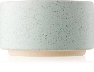 Paddywax Mesa Eucalyptus & Sage candela profumata 99 g