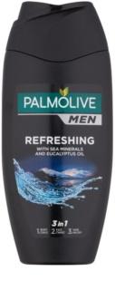 Palmolive Men Refreshing Duschgel für Herren 3in1