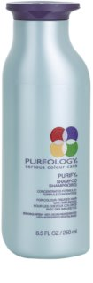 Pureology Purify Deep Cleanse Clarifying Shampoo For Colored Hair