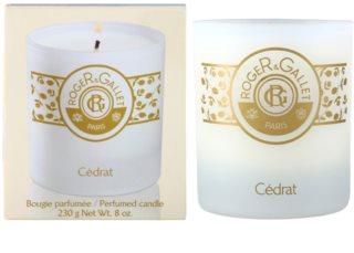 Roger & Gallet Bougie Parfumée świeczka zapachowa  230 g
