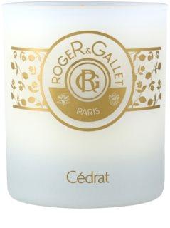 Roger & Gallet Bougie Parfumée vela perfumada  230 g