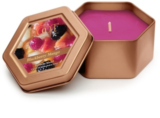 Root Candles Blackberry Mango bougie parfumée 113 g en métal