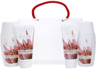 RYOR Normal to Combination set de cosmetice I. pentru femei