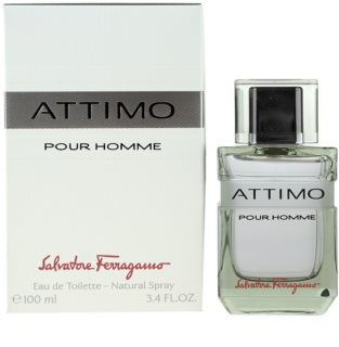 Salvatore Ferragamo Attimo Eau de Toilette for Men 100 ml