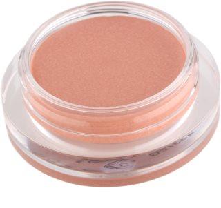 Shiseido Eyes Shimmering Cream Crèmige Oogschaduw