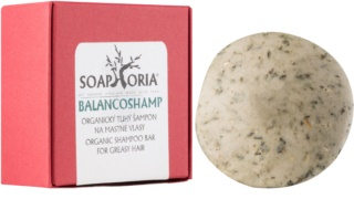 Soaphoria Hair Care