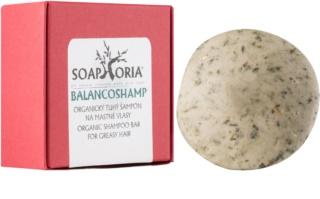 Soaphoria Hair Care органічний твердий шампунь для жирного волосся
