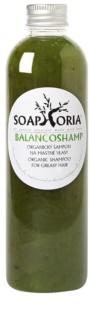 Soaphoria Hair Care tekutý organický šampon na mastné vlasy