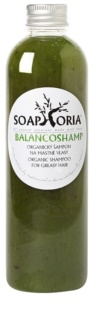 Soaphoria Hair Care Liquid Organic Shampoo for Oily Hair
