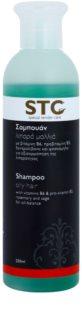 STC Hair Shampoo for Oily Hair